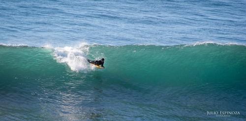 Surf en Punta de Lobos